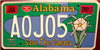 Alabama  Save the Cahaba River License Plate