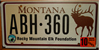 Montana Elk Rocky Mountain License Plate