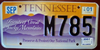 Tennessee Smoky Mountains License Plate